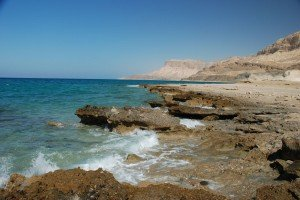Shore of the Red Sea
